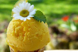 bisnis es krim rumahan